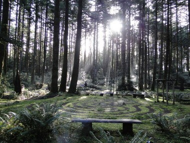 A mossy labyrinth coils beneath stately Douglas firs at WildSpring Guest Habitat in Port Orford.