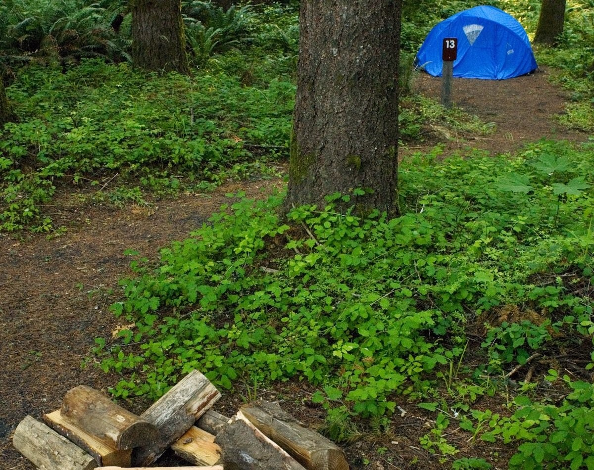 Oregon's 10 best campgrounds for tenters (it's a tough list