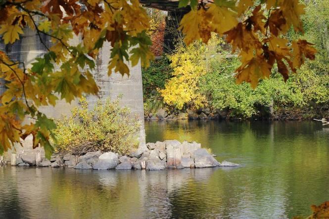 Lebanon, Oregon photo courtesy of Lori Westling.