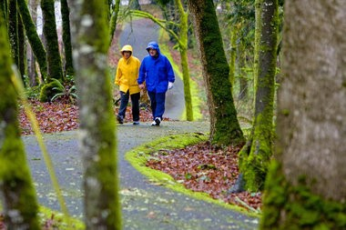 Jenne (left) and Jerry Henderson walk on a trail that runs along the front of Mary S. Young Park in 2010. West Linn planned to buy a Clackamas county-owned piece of land neighboring the park for a new trail access but county commissioners decided last week to instead put the property up for auction.