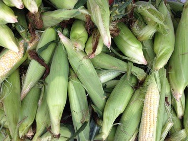 Sweet corn is starting to make its annual appearance at farm stands and markets in central Pennsylvania.