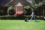A new study will attempt to find ways to lessen lawn work while maintaining quality.