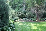 This back yard is layered with taller trees shading an understory of shrubs with a ground layer of perennials below those.