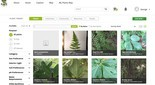 Plants Map's Plant Finder software creates lists of plants when you type in parameters.
