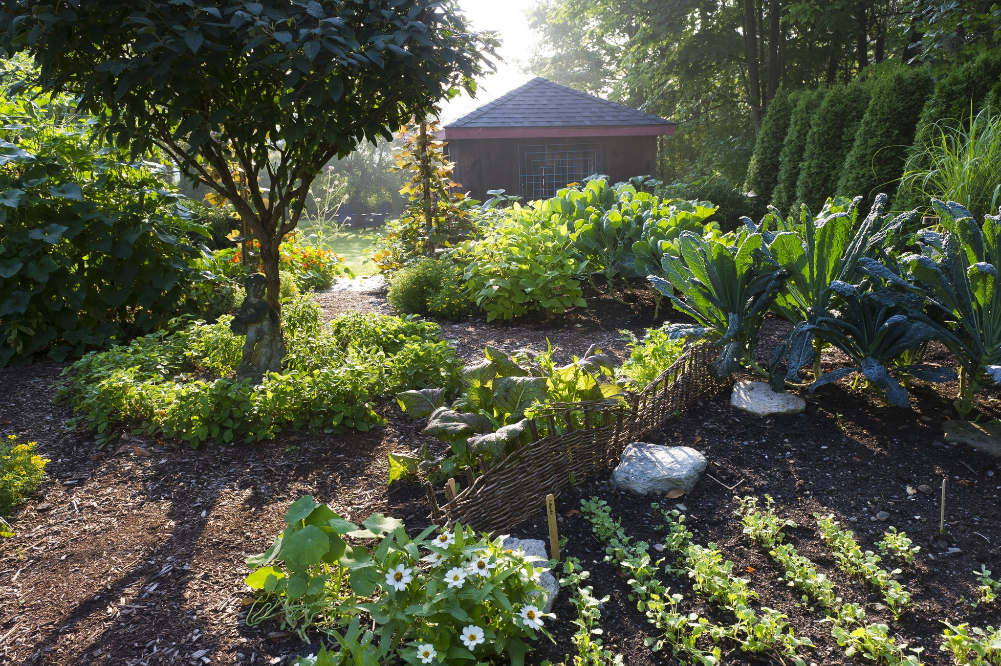 Grow Vegetables In The Shade It S Possible George Weigel Pennlive Com