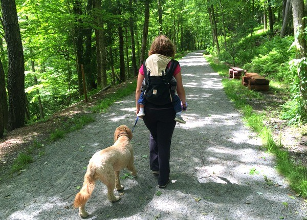 10 Of The Best Hikes In Pennsylvania To Enjoy This Spring