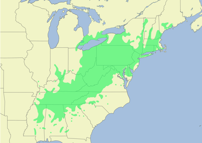 A map showing the native range of the American Chestnut circa 1900.