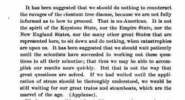 From the address of R. A. Pearson, of New York, to the Pennsylvania Chestnut Blight Commission in 1912