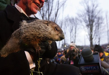 Punxsutawney Phil conducts an interview after predicting an early Spring on Groundhog Day at Gobblers Knob in Punxsutawney, Pa. 02/02/2013 Sean Simmers | ssimmers@pennlive.com
