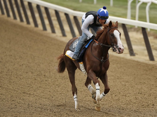 Belmont Stakes 2018 expert picks: Paths to victory for