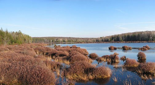Marsh Meadow Mountain: Natural Places of the Delaware Valley