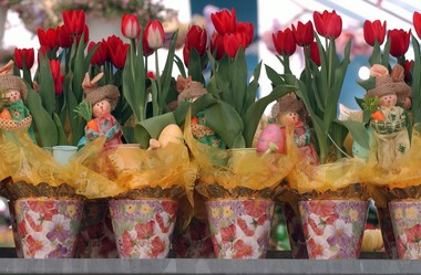 Colorful and inexpensive tulips will add a pop of color to your table and buffet setting.