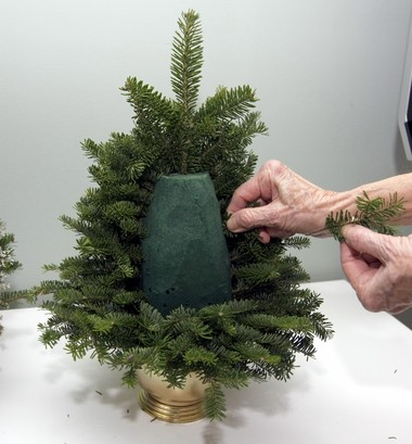 Use arborvitae branches to create a tabletop Christmas tree. Oasis floral foam is soaked in water until fully saturated and then shaped into a rectangular block and arranged in a container. Starting at the bottom, longer pieces of the evergreen cuttings are pushed stem first into the Oasis. Greens are added, progressing from the largest to the smallest as you move upwards.