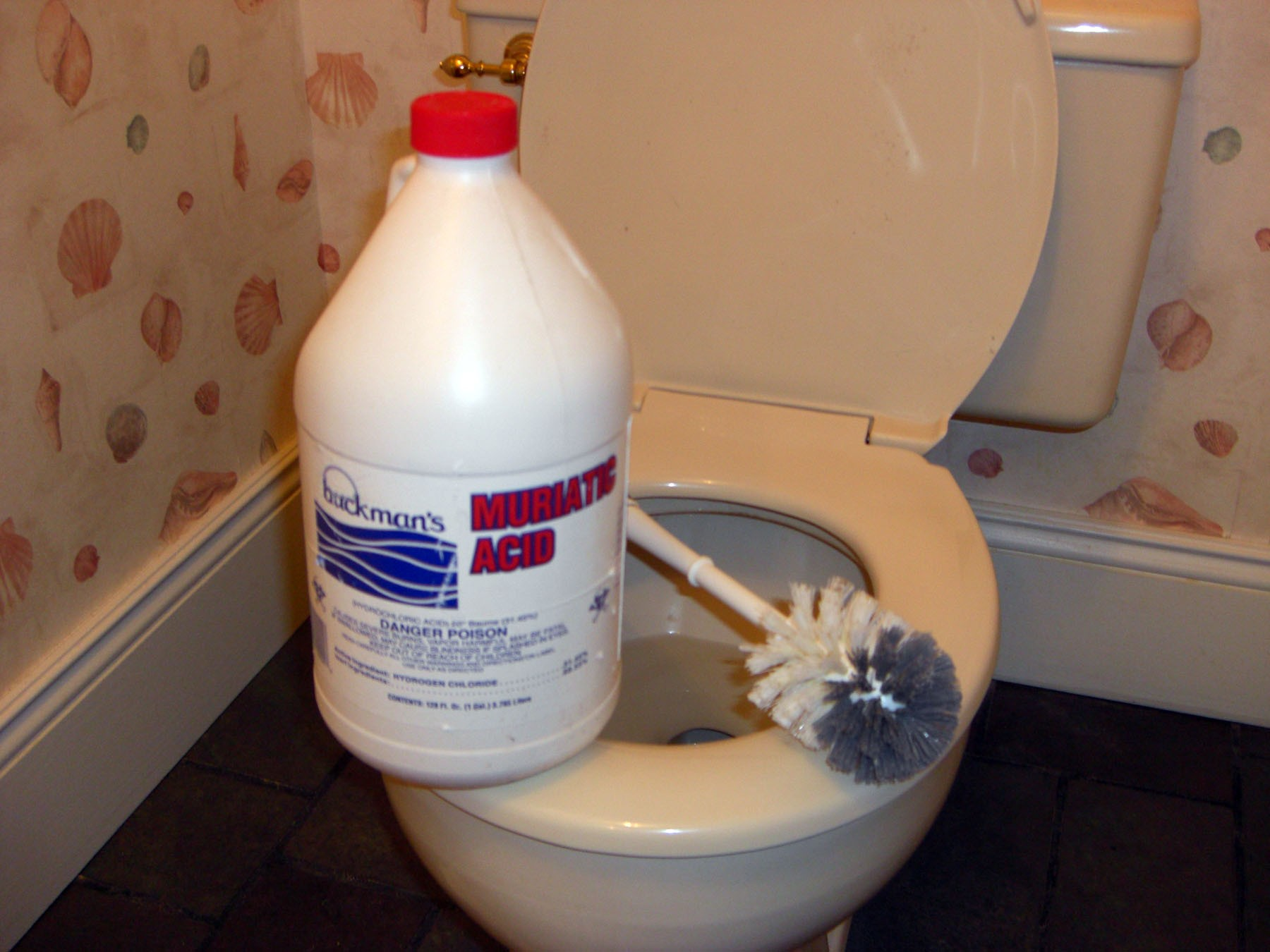 Awesome Muriatic Acid Is Best For Removing Stubborn Toilet Bowl Beatyapartments Chair Design Images Beatyapartmentscom
