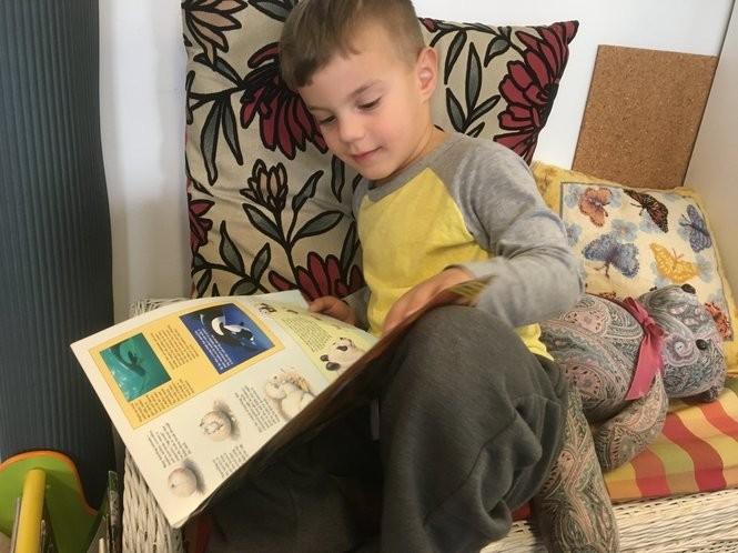 Nicholas DePrisco, 3, finds a cozy spot for reading at Children's Harbor Montessori School. (Staten Island Advance/Claire Regan)