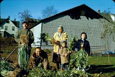 The Criaris and Zazakas families with a harvest of vegetables from the farm at 32 Merrill Ave., Bulls Head, circa 1965.
