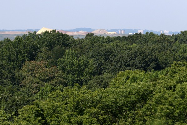 View from the top of Moses Mountain. (Staten Island Advance/Hilton Flores)