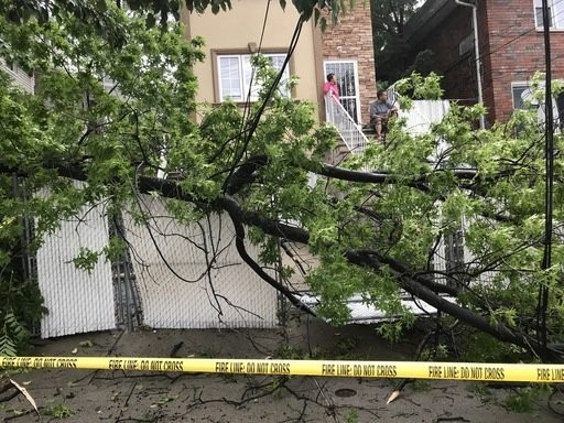 A tree brought down wires and crushed a fence in the driveway at 231 Vanderbilt Ave. as a storm moved through the area on Monday June 18, 2017.