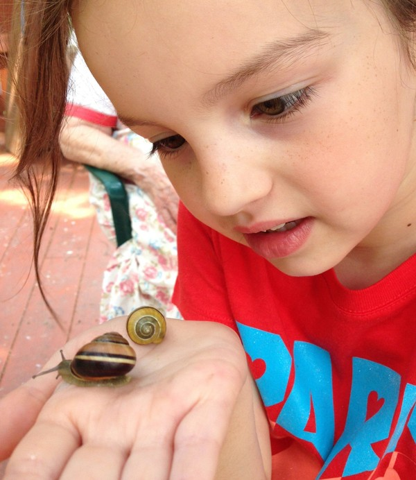 Paige Wollney examines a pair of grove snails