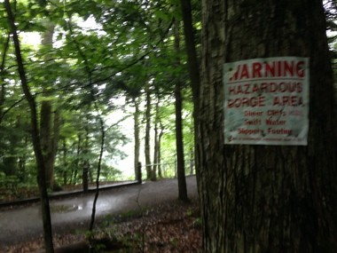 Warning signs are posted along the access path to Salmon River Falls. There is a wire fence separating the lookout point from the sheer cliffs.