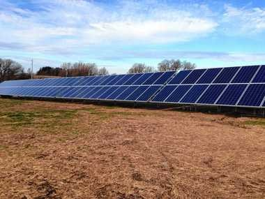 A field of about 1,000 solar panels has sprouted at the Fesko Dairy in Spafford. The owners expect to save $30,000 a year on the farm's electricity costs.