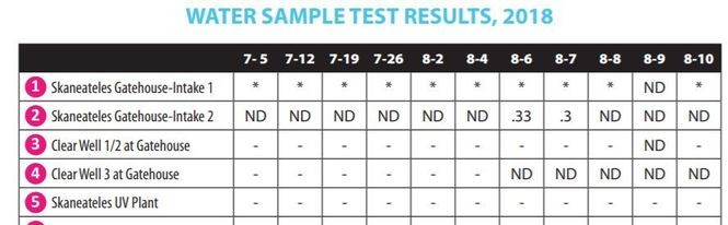 """This screenshot shows water test results for the past month in Skaneateles Lake. ND, or """"non-detect,"""" means no toxins were found."""