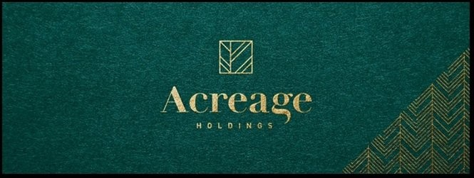 Former public TV executive Robert Daino of Syracuse is now chief operating officer of Acreage Holdings, a New York City company that acquired Syracuse-based NYCanna.