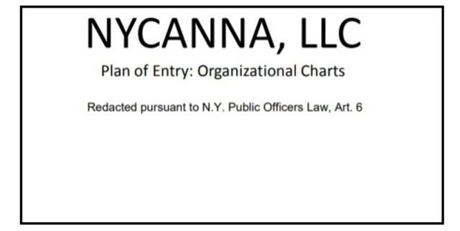 Politically connected Syracuse group flips NY marijuana