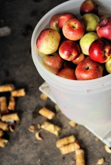 Apples wait to be peeled and cored at the 2012 LaFayette Apple Festival Saturday.