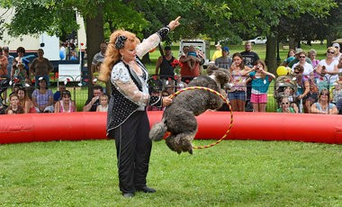 Laura Herriott entertained with her performing French poodles at the 26th annual Oswego Harborfest.