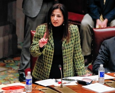 In this Monday, Jan. 12, 2015 photo, Sen. Diane Savino, D-Staten Island, speaks in the Senate Chamber at the state Capitol in Albany, N.Y. (AP Photo/Mike Groll)