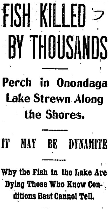 The headlines from the August 1, 1898 edition of the Syracuse Standard hint that dynmaite might be to blame for the mysterious deaths of thousands of perch.