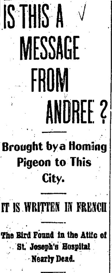 The Syracuse Standard believed that the pigeon, supposedly carrying a message from the missing explorer was legitimate.
