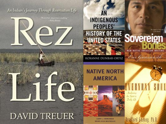 This selection of books offers insight into Native American culture and history, as well as current issues that Indigenous people face.
